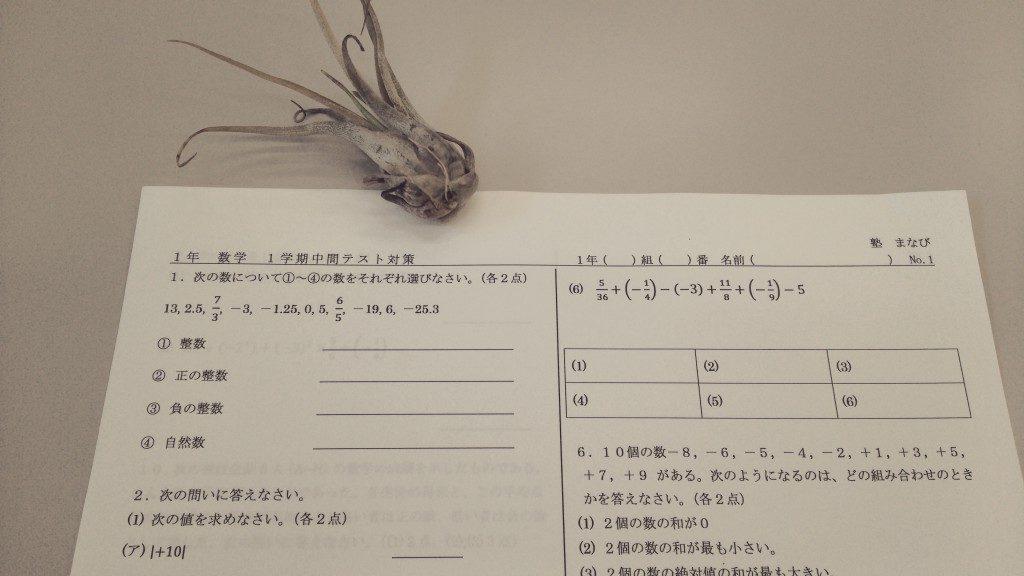 DSC_0049