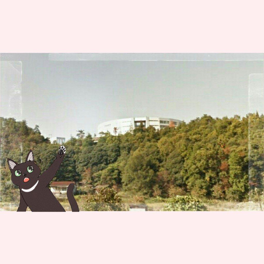 deco_2018-11-13_09-51-47
